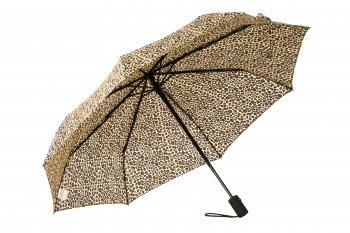 HS052 Taken Umbrella