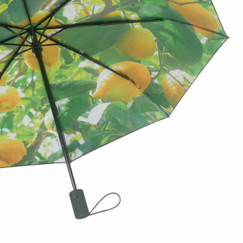 HS093 Lemon umbrella close up