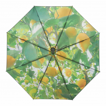 HS093 Lemon umbrella spread