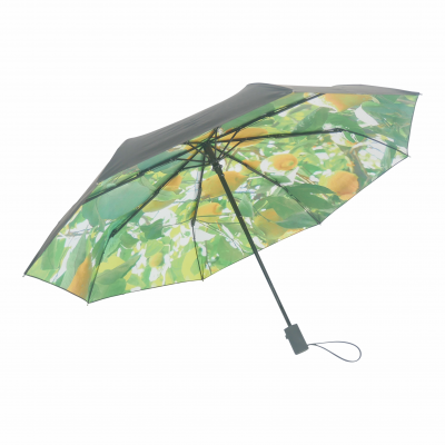 HS093 Lemon umbrella product image