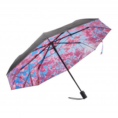 HS081 Cherry Umbrella